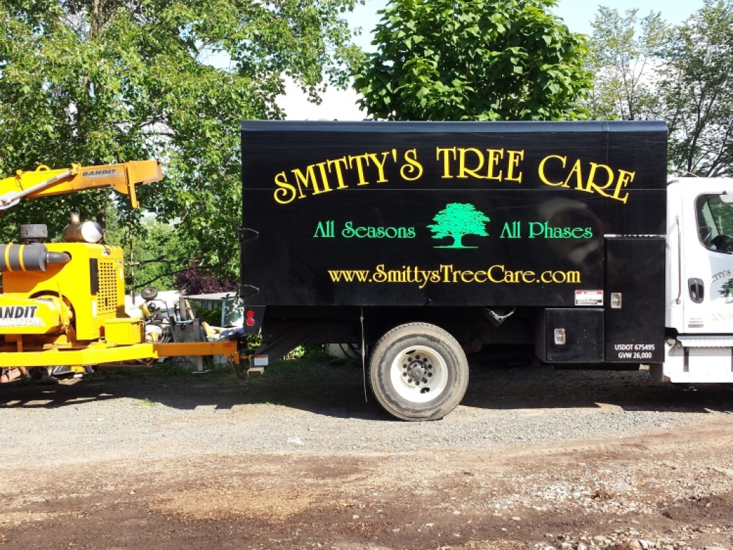 Find a Tree Pruning Company serving clients in Roswell, Alpharetta & Milton, GA